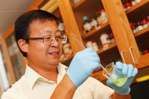 Fluorescence: Cao studies hydrogen sulfide as cure for neurodegenerative diseases