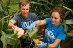 Renee Roebke, a UNK biology student from Seward, works alongside UNK biology professor Paul Twigg. (Photo by Corbey R. Dorsey, UNK Communications)