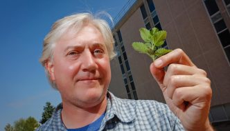 Motivated by Mint: Bryan Drew travels world to collect plants, extract DNA