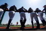 Loper Baseball 26