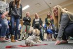 Laura Stoner, a UNK student from Kearney, gives a demonstration on canine behavioral training Tuesday during a psychology fair hosted by UNK. (Photo by Corbey R. Dorsey, UNK Communications)