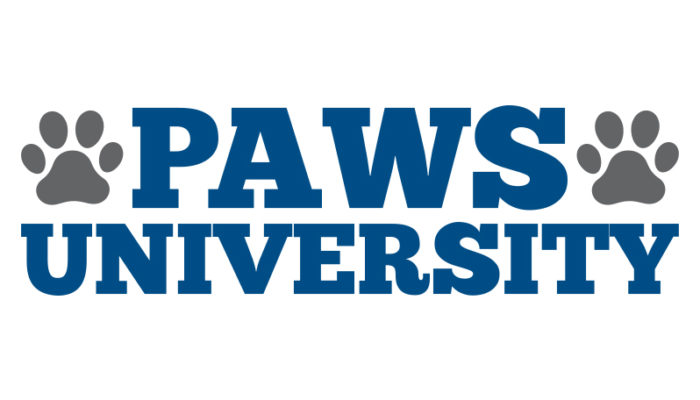 UNK partners with Kearney Public Schools to offer PAWS University summer camp