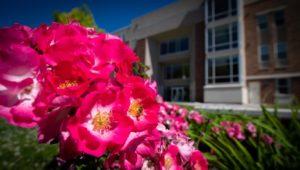 Campus Flowers 25