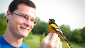 Oriole Research 6