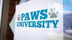 PAWS University 38