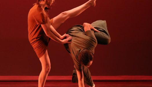 Dance Plucked 19