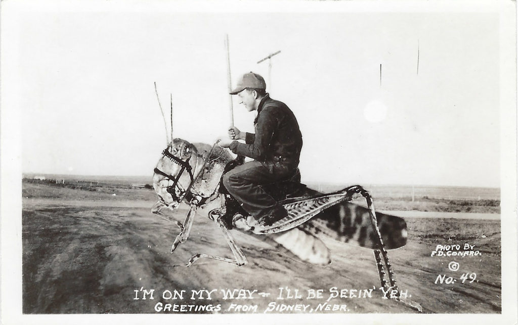 "This ""exaggeration postcard"" from Garden City, Kansas, photographer F.D. Conard tells the rest of the country Nebraska has conquered the grasshopper plagues."