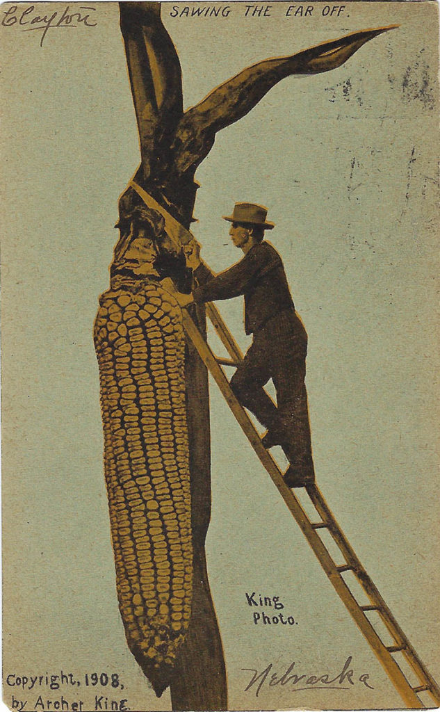 "This ""exaggeration postcard"" from 1908 promotes Nebraska's commodities, including corn so large you need a ladder and handsaw to harvest it."