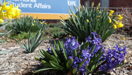 3-28 Spring campus photos-5