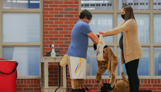 Louie the Loper Tryout-15