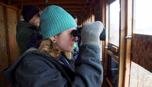 Tourists view cranes at Rowe Sanctuary near Gibbon. A University of Nebraska at Kearney study found the economic impact of tourism in central Nebraska during the sandhill crane migration was $14.3 million in 2017. (Photo courtesy Iain Nicolson Audubon Center at Rowe Sanctuary)