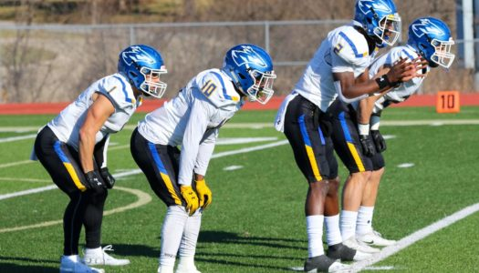 Offensive Backfield Mineral Water Bowl