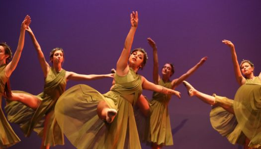 Dance Plucked 4