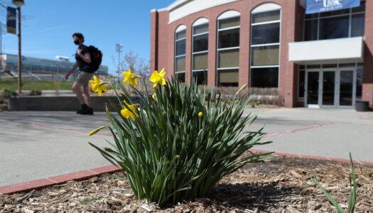 3-28 Spring campus photos-13