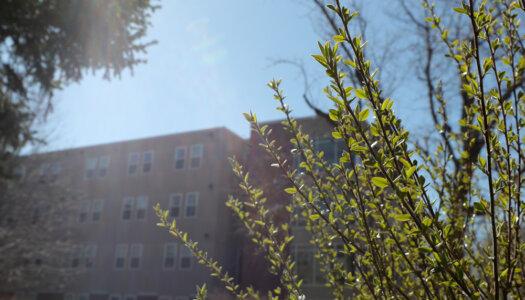 3-28 Spring campus photos-6