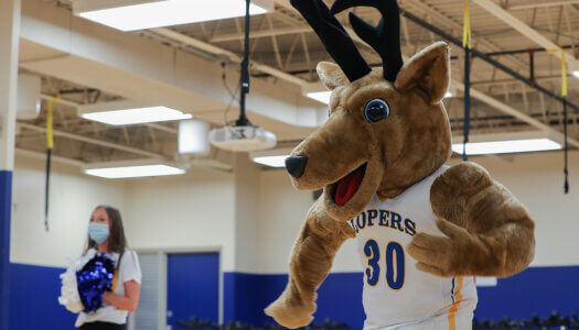 Louie the Loper Tryout-3
