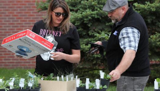 Spring plant fundraiser-25