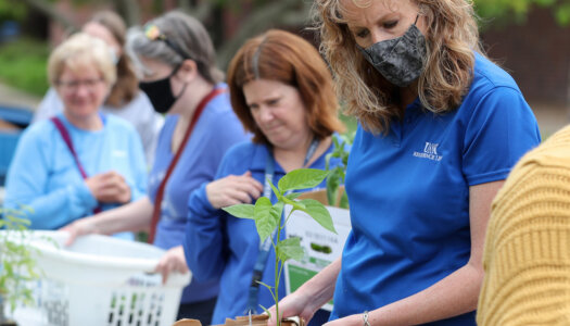 Spring plant fundraiser-29