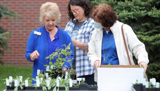 Spring plant fundraiser-30
