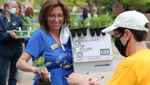 Spring plant fundraiser-31